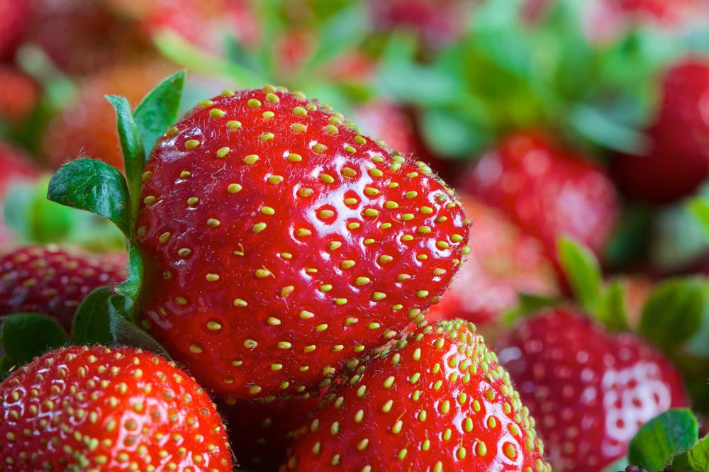 Strawberries shutterstock.com
